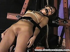 Bondage porn tube - indian xxx film